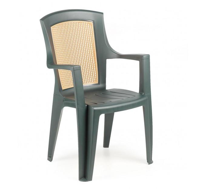 Кресло Viola wood